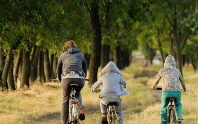 La actividad física como medicina